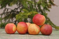 jabłczany czerwony smakowity zdjęcia royalty free