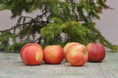 jabłczany czerwony smakowity zdjęcia stock