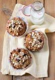 Jabłczany i jagodowy wholewheat rozdrobni muffins Zdjęcia Stock