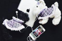 Jabłczany iPhone słuchawek styl Zdjęcie Stock