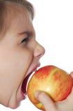jabłczany kąsek Zdjęcia Royalty Free