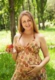 jabłczany kobieta w ciąży Obraz Royalty Free