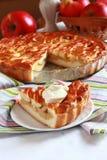 Jabłczany kulebiak z kratownicą Obraz Stock
