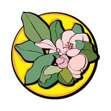 Jabłczany kwiat klamerki sztuki kolor żółty Obraz Stock