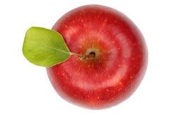 Jabłczany owocowy czerwony odgórny widok odizolowywający na bielu Fotografia Stock