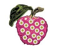 Jabłczany słonecznik Obrazy Stock