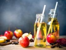 Jabłczany sok w szklanej butelce dla jesieni i spadek pijemy pojęcie Obraz Royalty Free