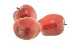 jabłczany tło odizolowywający lekki czerwony cienia biel Fotografia Stock