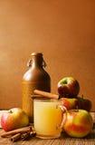 jabłczany wino Obrazy Stock