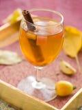 Jabłczany wino lub cydr Fotografia Royalty Free