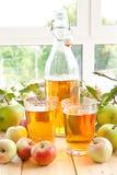 jabłczanych jabłek świeży sok Zdjęcie Royalty Free