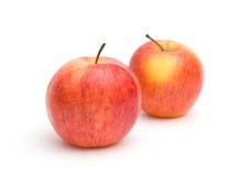 jabłek czerwieni dwa kolor żółty Obrazy Royalty Free