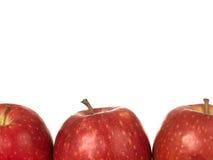 jabłek damy menchii czerwień Zdjęcia Royalty Free
