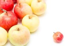 jabłek tła fotografii serie biały Obrazy Stock