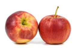 jabłek tła fotografii serie biały Zdjęcia Stock