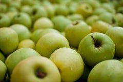 jabłka świezi zdjęcie stock