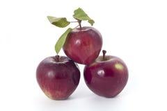 jabłka czerwoni fotografia royalty free