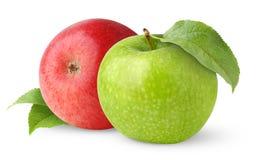 jabłka dwa obraz royalty free