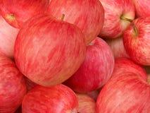 jabłka fruit czerwień Fotografia Royalty Free
