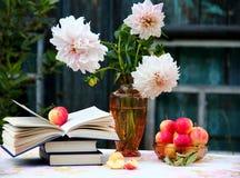 Jabłka i książki obraz stock