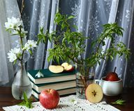 Jabłka i książki obrazy royalty free