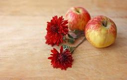 Jabłka i kwiaty obraz stock