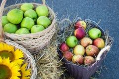 Jabłka i słoneczniki w koszach Żniwo na haystack Fotografia Stock