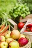 Jabłka i warzywa Zdjęcia Stock