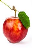 Jabłka, jabłko na białym tle Fotografia Royalty Free