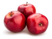 jabłka krzyżują wyśmienicie owoc odizolowywający czerwonej sekci biały całego obraz royalty free