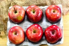 jabłka krzyżują wyśmienicie owoc odizolowywający czerwonej sekci biały całego obraz stock
