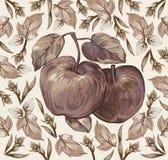 Jabłka. Liście. Piękny tło. Fotografia Stock