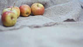 Jabłka na tle kanwa zbiory wideo