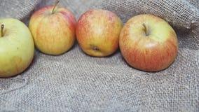 Jabłka na tle kanwa zbiory