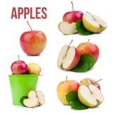 jabłka odizolowywający Zdjęcie Royalty Free