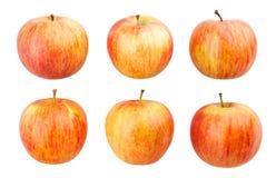 jabłka paskujący fotografia stock