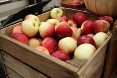 jabłka pudełko Zdjęcia Royalty Free