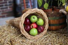 Jabłka są koszykowego wizerunku projekta elementu owocowych rolników świeżym rynkiem obrazy royalty free