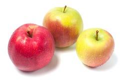 jabłka tła używania żywności odizolowane materiałami white Zdjęcia Royalty Free