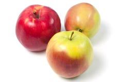 jabłka tła używania żywności odizolowane materiałami white Fotografia Royalty Free