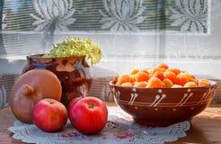 Jabłka, talerz z malinkami i pękający gliniany garnek z kwiatem w świetle słonecznym, zdjęcie royalty free