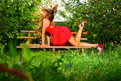 jabłka to ogrodowa kobieta Obraz Royalty Free