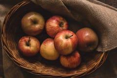 Jabłka w Łozinowym Koszu zdjęcie stock