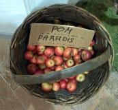 Jabłka w koszykowej skrzynce fotografia stock