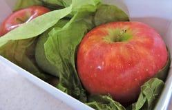 Jabłka w pudełku Fotografia Royalty Free