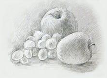 Jabłka, winogrona, peaÑ  h tła rysunku ołówka drzewny biel Fotografia Royalty Free