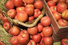 jabłka wypiętrzają czerwień Fotografia Royalty Free
