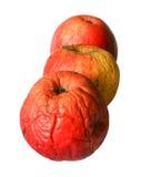 jabłka zły Zdjęcie Royalty Free
