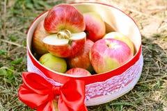 Jabłka z miłością zdjęcie royalty free