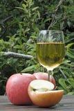 jabłko jabłczany sok Zdjęcie Royalty Free